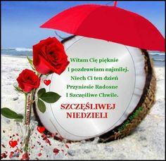 Christmas Bulbs, Holiday Decor, Blog, Polish, Quotes