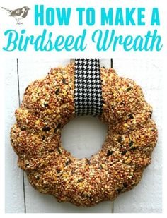 Make a Bird Seed Wreath! Bird seed wreaths are easy to make, even for kids. Birds love them!
