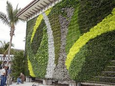 PALM BEACH- The living wall, on the western facade of the Saks Fifth Avenue store, part of the nearly completed Worth Avenue renovation.