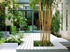 Terrasse en bois pour accueillir un jardin zen autour de la table et des chaises de jardin. Agrémenté de plantes grimpantes, de fougères et de bambou.