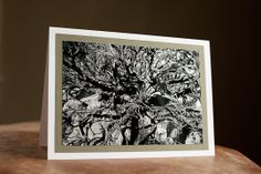Fine Art  Card  5 x 7 Desert tree black by AudreyKerchnerstudio, $5.00 #promoswap