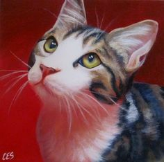 Original Daily PAINTING CES - Cat Kitten Pet Portrait Red Love Eye NFAC EBSQ Art | eBay