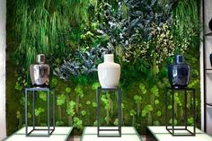 Forest Green Wall by Green Mood - Brussels - Belgium & Original designs with preserved plants and mosses! Moss Fashion, Green Art, Flower Boxes, Flowers, Interior Walls, Garden Landscaping, Nature, Glass Vase, Tropical