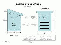 Ladybug House Plans: How To Build A Ladybug House