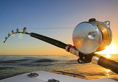 The number one resource for Fishing gear and information Fishing Life, Sport Fishing, Fishing Reels, Spincast Reel, Rod And Reel, Shark Conservation, Deep Sea Fishing, Fishing Accessories, Red Fish