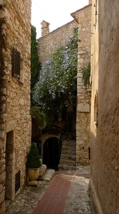Chateau Eza - Eze Village, France. It's my dream to travel here one day...