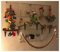 Parrot Perch Diy, Diy Parrot Toys, Diy Bird Toys, Parrot Pet, Diy Budgie Toys, Bird Perch, Parrot Stand, Bird Stand, Cockatiel Toys