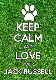 KEEP CALM AND LOVE YOUR JACK RUSSELL