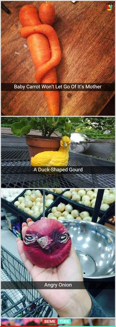 Unusual Growth of Different Fruits and Vegetables That Makes it Look Like Something Else