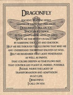 Not a believer in wiccan beliefs, but dragonflies represent my sister. This speaks to me. Dragonfly Poster Size Wicca Pagan Witch Totem Goth Punk Book of Shadows Dragonfly Quotes, Dragonfly Tattoo, Dragonfly Symbolism, Dragonfly Art, Hummingbird Symbolism, Dragonfly Drawing, Dragonfly Images, Animal Spirit Guides, Spirit Animal
