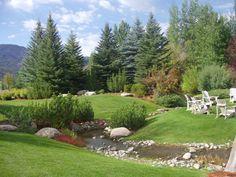 Evergreen Landscaping - Trees & Shrubs