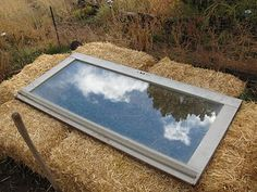 Straw bale Cold-frame and Post-Frost Plant Photos