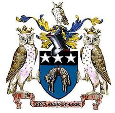 Heraldry Of The World On Pinterest Coat Of Arms Family