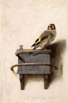 The Goldfinch by Carel Fabritius, 1654 Oil on Panel ( Royal Picture Gallery Mauritshuis) Popular as pets at this time.