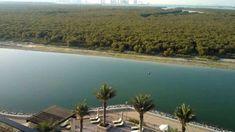 Eastern Mangroves Abu Dhabi 2018