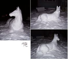 I think we will build a snow horse this year!
