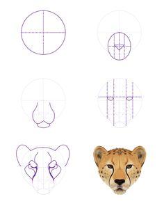 Image from https://cdn.tutsplus.com/vector/uploads/2013/11/drawingbigcats_4-5_cheetah_head_front.png.