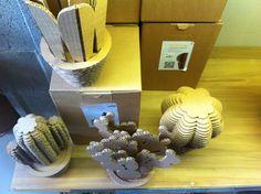 Se avete il pollice nero non perdetevi le piante grasse di CactusNext! Sul blog di Retrò and Design