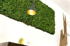 Moss Wall: http://www.archello.com/en/product/evergreen-die-natürliche-mooswand  Biophilia Design Competition: http://www.archello.com/en/event/biophilia-design-competition #Design #Art #Green