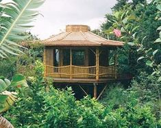 bamboo house. I would love this in the jungles of puerto rico