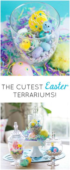 How sweet are these DIY Easter terrariums? Fill glass jars with mini fluffy chicks and Easter candy!