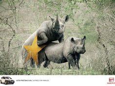 Seat:  Rhinos