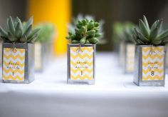 Love this idea -- place cards and favors all in one! Plus the succulent plants are a beautiful, natural touch.