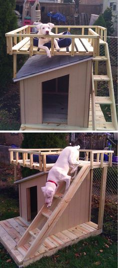 DIY Dog House with Roof Top Deck | The Home Depot Community