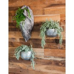Create an elegant oasis in any space with these galvanized metal trough planters. Not only will the pieces enhance your mood and environment, but they will a… Metal Wall Planters, Trough Planters, Stone Planters, Real Plants, Faux Plants, Growing Plants, Wicker Planter, Planter Pots, Metal Trough
