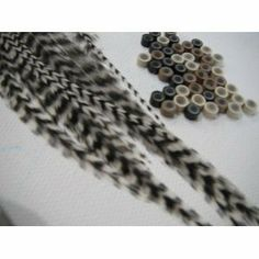 """Feather Hair Extension 5 Real Grizzly Feathers /White Hair Extension 5""""-6"""" 2 Silicone Micro Ring Beads by SEXY SPARKLES. $4.99. 5 REAL GRIZZLY FEATHERS RANGING FROM 5""""-6"""" IN LENGTH"""
