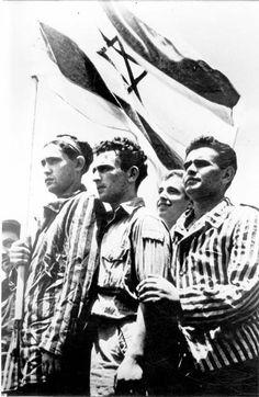 The Holocaust - Yad Vashem - Survivors