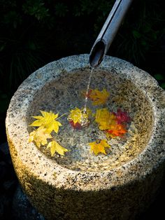 """Tsukubai / A Japanese garden cannot lack in """"Tsukubai"""" with the thing which washes a hand with water before sitting down in its seat in a manner of """"Sado(the tea ceremony)"""""""