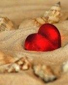 Free love heart & seashells on beach.jpg phone wallpaper by jackiegg