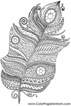 free printable feather colouring in page Mandala Coloring Pages, Animal Coloring Pages, Free Coloring Pages, Coloring Books, Elephant Colour, Chameleon Color, Baby Boy Photography, Printable Adult Coloring Pages, Colorful Feathers