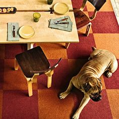 Rugs and carpets withstand a lot of wear and tear, especially in high-traffic rooms. Try sustainable flooring in these rooms. It won't harm the earth, and the natural fibers last longer than the synthetic variety.