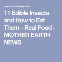 11 Edible Insects and How to Eat Them - Real Food - MOTHER EARTH NEWS
