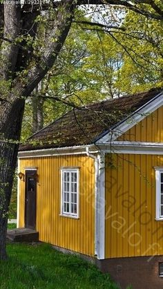 Yellow House Exterior, Cottage Exterior, Dream House Exterior, Exterior Colors, Exterior Design, She Shed Decorating Ideas, House Color Schemes, Colour Schemes, Home Exterior Makeover