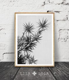 Tropical Plant Print, Black and White Photography, Wall Art Decor, Printable Plant Photo, Large Art Poster, Lila and Lola