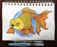 Colorful Goldfish drawing by Darren Hester | Doodle Addicts