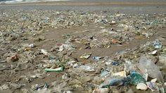 Deutsche verbrauchen mit Abstand das meiste Plastik in Europa – ein Viertel der…