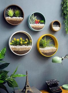 indoor flowers Creative Art Round Wall Flower Vase For Succulent and Indoor Plants Indoor Flowers, Indoor Plants, Wall Hanging Plants Indoor, Suculentas Interior, Pastel Room, Hanging Succulents, Growing Succulents, Bedroom Plants, Bed Wall