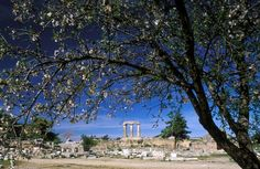 Korinthos, Greece via Greece Tourist Info, Places In Greece, Visit Greece, Macedonia, Amazing Places, Counting, Planes, The Good Place, Trains