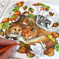 My sleeping foxes 🍁🍂🦊🦊✨ . Coloring Book Art, Adult Coloring Pages, Chris Cheng, Colored Pencil Techniques, Fox Art, Polychromos, Color Pencil Art, Copic, Art Techniques