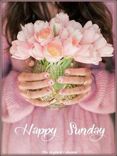 86 Best Happy Sunday Images In 2019 Happy Sunday Hello Sunday