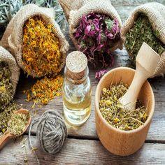 Botanicals & Herbs