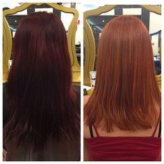 - Jean, não estou contente com meu cabelo, sempre quis ele ruivo, mas tudo que consegui foi vermelho, além dele estar meio escuro nas pontas! Sonho muito com um ruivo de verdade, natural.. Tem jeito? - Chegai mais, deixa eu te contar uma coisa: tudo tem jeito! #ginger #haircolor #colortransformation #illuminacolor #makeover #circushair