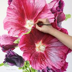 First of the month- a great time to get started on a BIG new project! #hollyhocks #watercolorflowers #flowerpainting #paintinginprogress #instabloom #flowerstagram #painting #watercolour #watercolor #botanicalart #realism #realisticart #watercolorpainting #instaart #annamasonart #firstday #Regram via @annamasonart