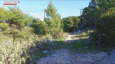 Υμηττός  Διαδρομή ΟΤΕ –Κορακοβούνι -  Μαυροβούνι