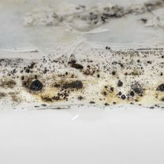 Mold and mildew definitely cause a lot of trouble. Removing them is a BIG investment in time and money. Here are some facts on mold and mildew that you might find interesting. 1. Mold is the root cause of 30 different types of health problems, mostly related to the skin and respiratory system. 2. 100% of chronic sinus infections find mold to be their causative agent. 3. Mold and mildew can develop and spread on any surface. All they need is a damp moist environment. Dehumidifiers, Good Things, Blog, Public