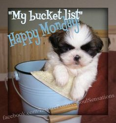 """Make having a """"Happy Monday"""" a part of YOUR bucket list!  Wishing all of our customers a wonderful day!"""